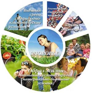 Педагогический совет в ДОУ на тему Организация работы ДОУ по внедрению новых форм физического развития, привитию навыков здорового образа жизни