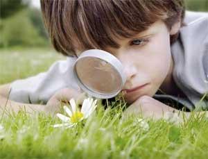 Тема проекта «Игра как метод экологического воспитания детей младшего дошкольного возраста»