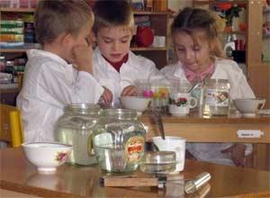 Педагогический проект Развитие познавательной активности старших дошкольников методом экспериментирования