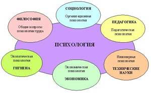 Связь психологии с другими научными дисциплинами