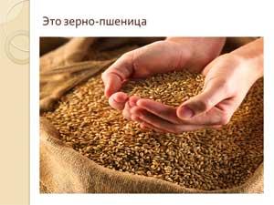 Конспект непосредственной образовательной деятельности в средней группе: «Хлеб всему голова»