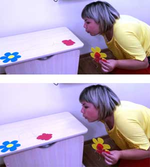 Дидактическое пособие «Задуй бабочку на цветок» (на развитие воздушной струи)