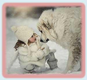 СЕМИНАР ДЛЯ РОДИТЕЛЕЙ «Правила поведения при общении с животными»