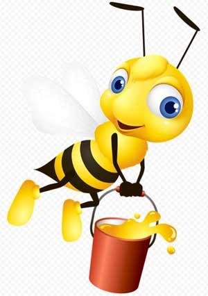 Конспект совместной деятельности с детьми старшей группы на тему: «Летнее путешествие в мир насекомых» с использованием ИКТ, технологии развития творческого воображения