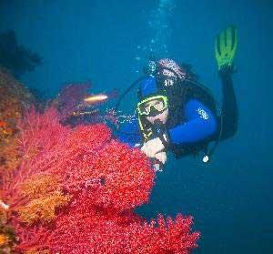 Как я провел лето на Средиземном море