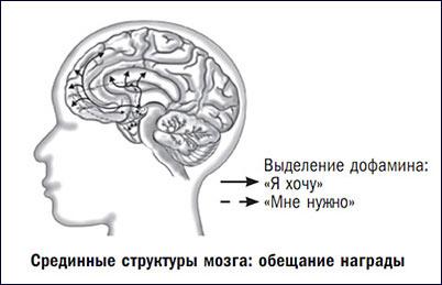 дофамин допамин