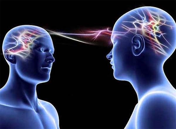 отличия мужского и женского мозга