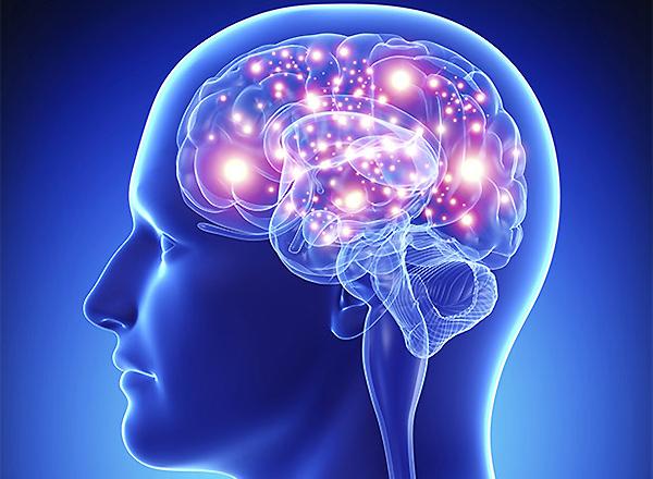 нейросканирование мозга