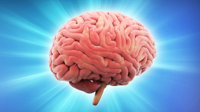 оптимистичный мозг