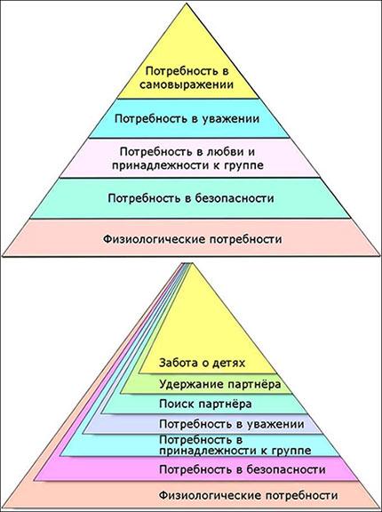 новая Пирамида Маслоу