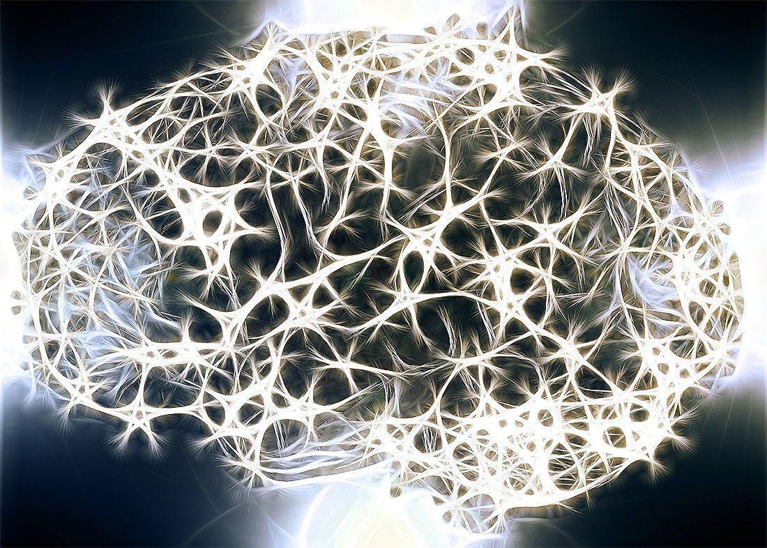 кодирование воспоминаний в мозге