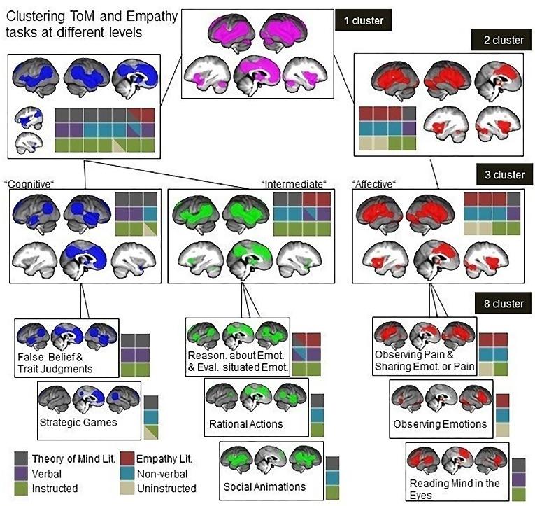 эмпатия и когнитивная ментализация
